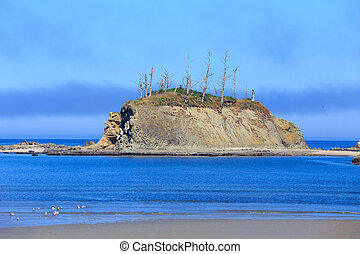 Sunset Bay State Park Oregon