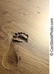 Sunset Beach Footprint