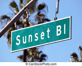 Sunset Boulevard street sign in sunny Hollywood California.