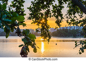 Sunset by the Water - Leaves covering direct glare from the ...