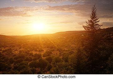 Sunset Countryside