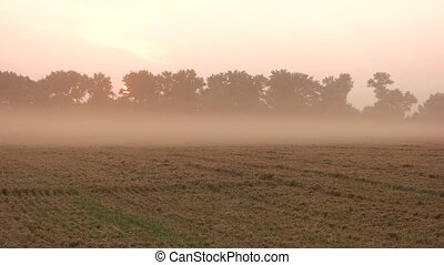 Sunset fast motion. Evening fog above a field. Dust over The...
