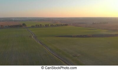 Sunset green field mist aerial drone view