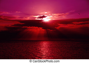 - A brilliant sunset over the water of the Gulf of Mexico at Ft Meyers Beach in December.