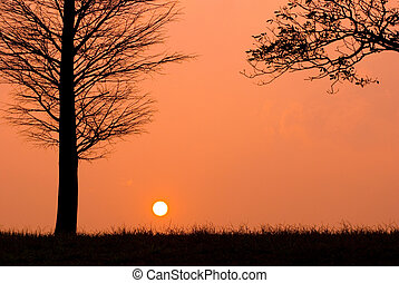 Sunset in a peaceful evening