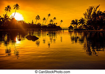 Sunset in a tropical paradise with palm trees