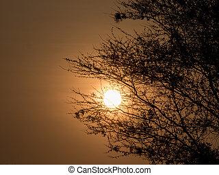 sunset in Africa - beautiful sunset in Africa