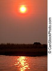 Sunset in Botswana's Chobe park.