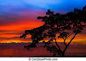 Sunset in Costa Rica on the ocean coast