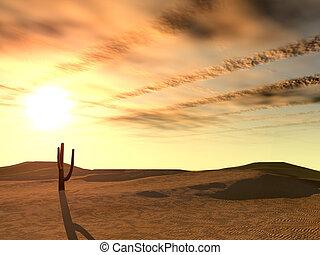 Sunset in desert. A landscape at night in deserted desert