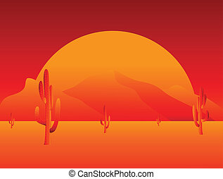 Sunset in desert with cactus