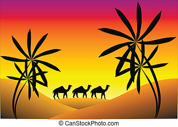 Sunset in desert with palms and camels