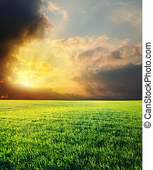 sunset in dramatic sky over green field