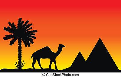 Sunset in Egypt
