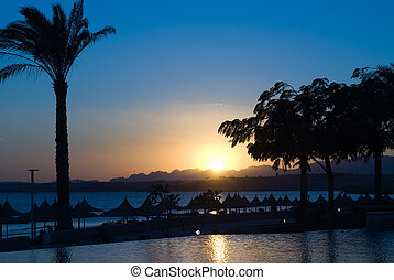 sunset in Egypt - sunset and swimming pool at sharm el...