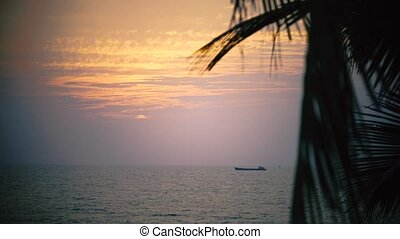 Sunset in Goa with ships at the horison and palm tree leaves