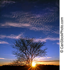 Sunset in Illinois
