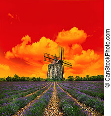 Sunset in lavender field. Landscape with windmill and dramatic s