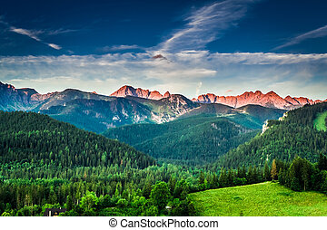Sunset in mountains in Poland in summer, Europe