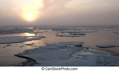 Sunset in ocean among icebergs and ice in Arctic.