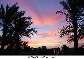 Sunset in Sharm el Sheikh resort, Egypt