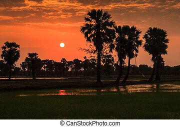 Sunset in Thailand.