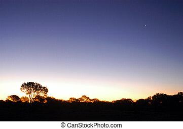 sunset in the Australian bush