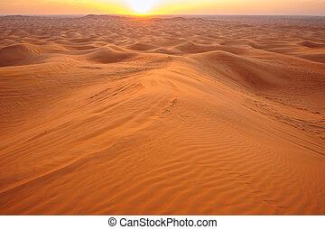 sunset in the desert sand