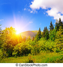 sunset in the mountains (Carpathians Goverla)
