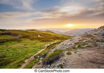 sunset in the mountains landscape. rock and .pine trees