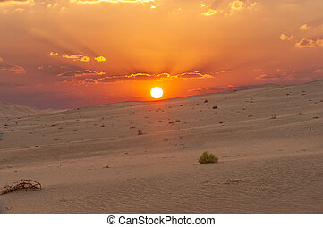Sunset in the Omani Rub al-Chali Desert