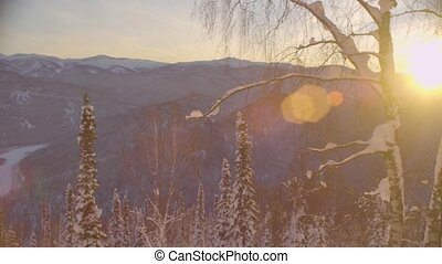 Sunset in winter forest in the mountains