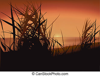 Sunset Lake - Colored Background Illustration, Vector