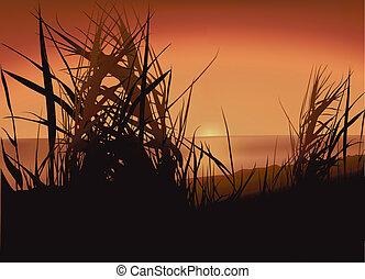 Sunset Lake - Colored Background Illustration, Vector