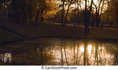 Sunset. Lake in the park in autumn