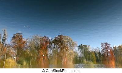 Sunset Landscape Reflection - Sunset landscape reflection