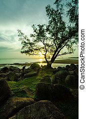 Sunset near the beach