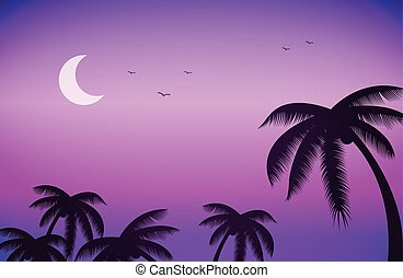 Sunset night sky and palm trees