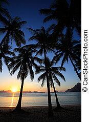sunset of tropic island