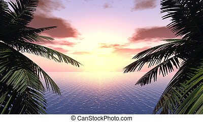 Sunset on a background of branches of palm trees