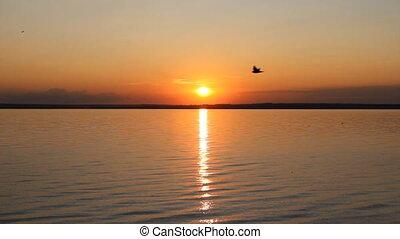 Sunset on a ocean shore. Great touchdown