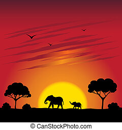 Sunset on a savanna - Illustration of sunset on a savanna...