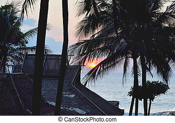 Sunset on a tropical resort beach with silhouettes of trees.