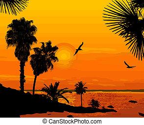 Sunset on beautiful seascape - Sunset on beautiful tropical...