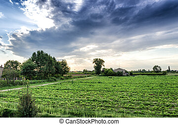 Sunset on cultivated fields in Italian countryside in Emilia...
