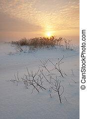 Sunset on field in winter