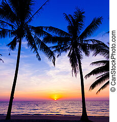sunset on the beach. Sunset over the tropical beach - sunset...