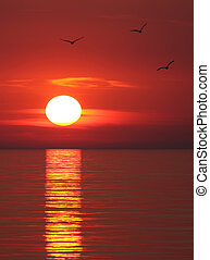 Sunset on the Black sea