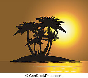 Sunset on the island with palm's