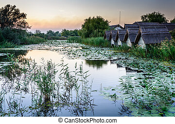 Sunset on the lake with water lilies and reeds with rustic houses in the background